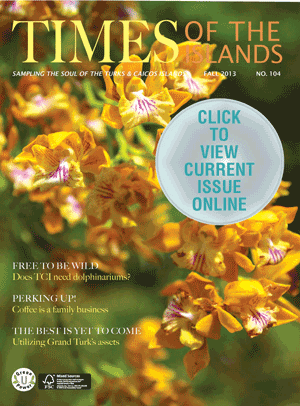 fall-2013-Cover