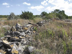 Rock wall in Lorimers, Middle Caicos represents typical generational property boundary marker.
