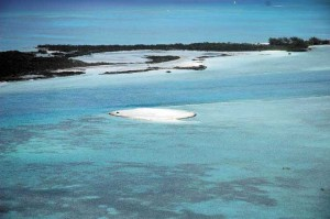 Remains of spoil pile left in Mangrove Cay shoal