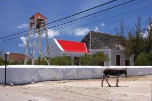 Life on Salt Cay