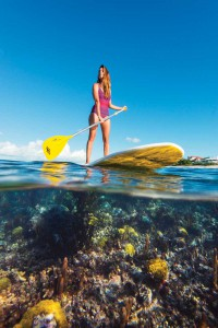 Besides being good exercise to develop core muscles, stand up paddling offers a heron's view of TCI's underwater realm.