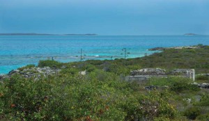 The privately owned cay includes some of TCI's largest sisal plants.