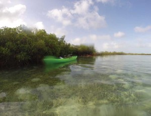 Kayak exploration of East Caicos