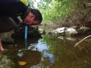 John finds a welcome pool of fresh water on East Caicos, which he can drink through his filter straw.