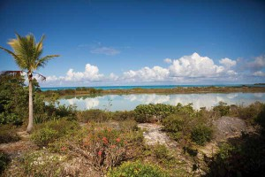 Freshwater ponds dot the Pine Cay landscape.