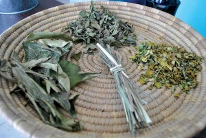 Local herbs from North Caicos are dried as ingredients for the teas.