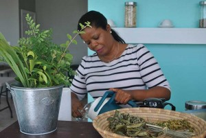 "Donna Gardiner has turned the North Caicos tradition of ""bush tea"" into a new business venture."