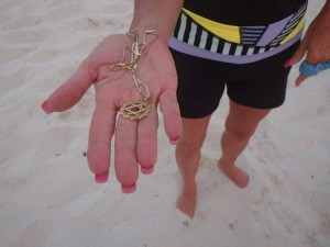 "John recovered this lost gold ""Star of David"" in the sand of Grace Bay Beach."