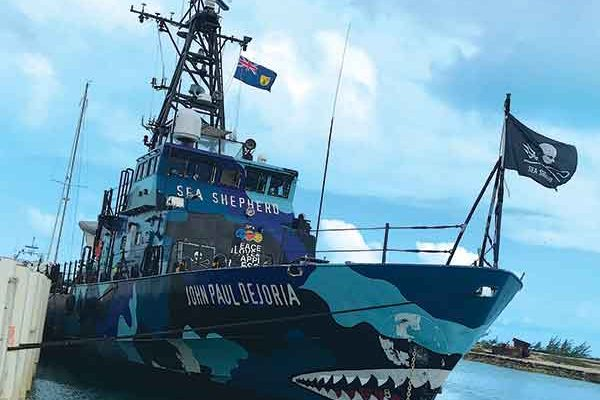 Sea Shepherd's MV John Paul DeJoria visited the Turks & Caicos Islands in May 2018 as part of Operation Good Pirates.